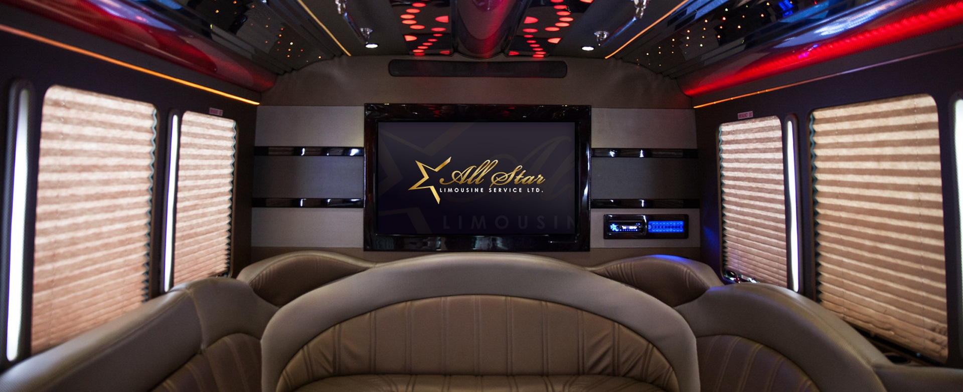 22 Passenger Party/Limo Bus
